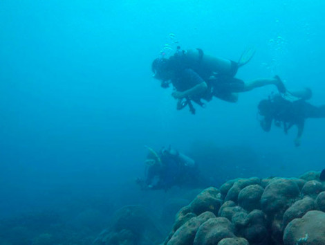 Baru Island Scuba Diving Day Tour