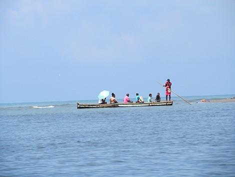 Mangrove Tunnels Canoe Tour
