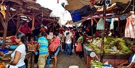 Bazurto Market Tour