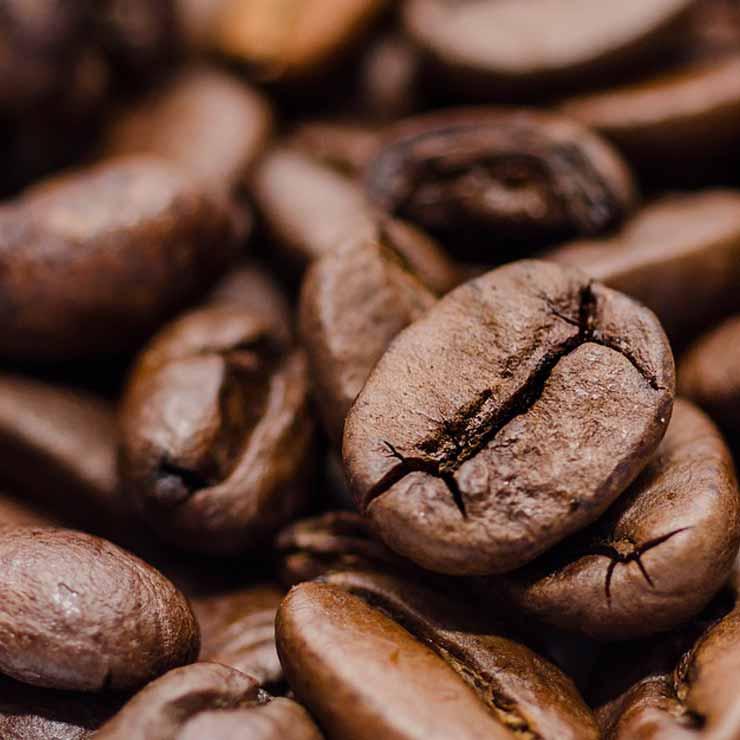 bogota-coffee-masters